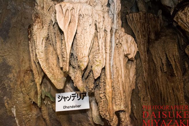 龍河洞のシャンデリア石
