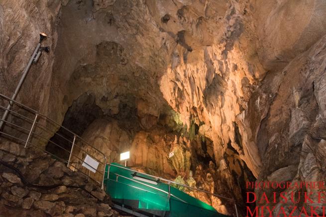 龍河洞の天井