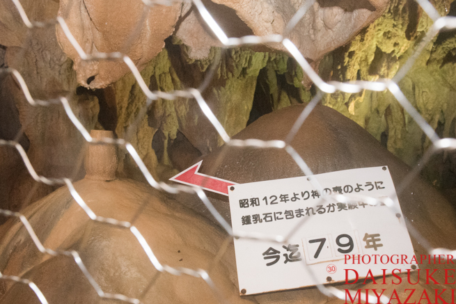 龍河洞の実験場所