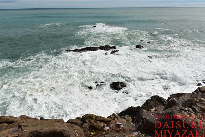桂浜の荒波