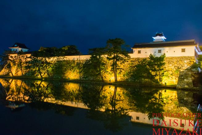 今治城の外堀夜景