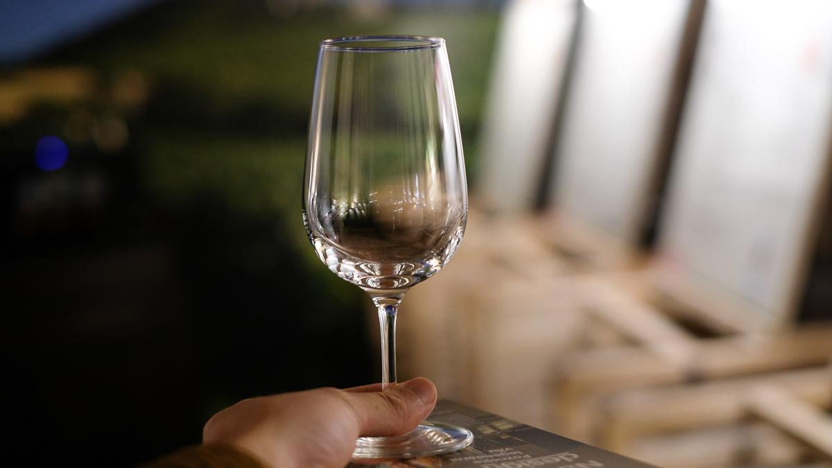 チェコワイン好き必見!121種類のワインが2,500円で試飲できるワインサロン