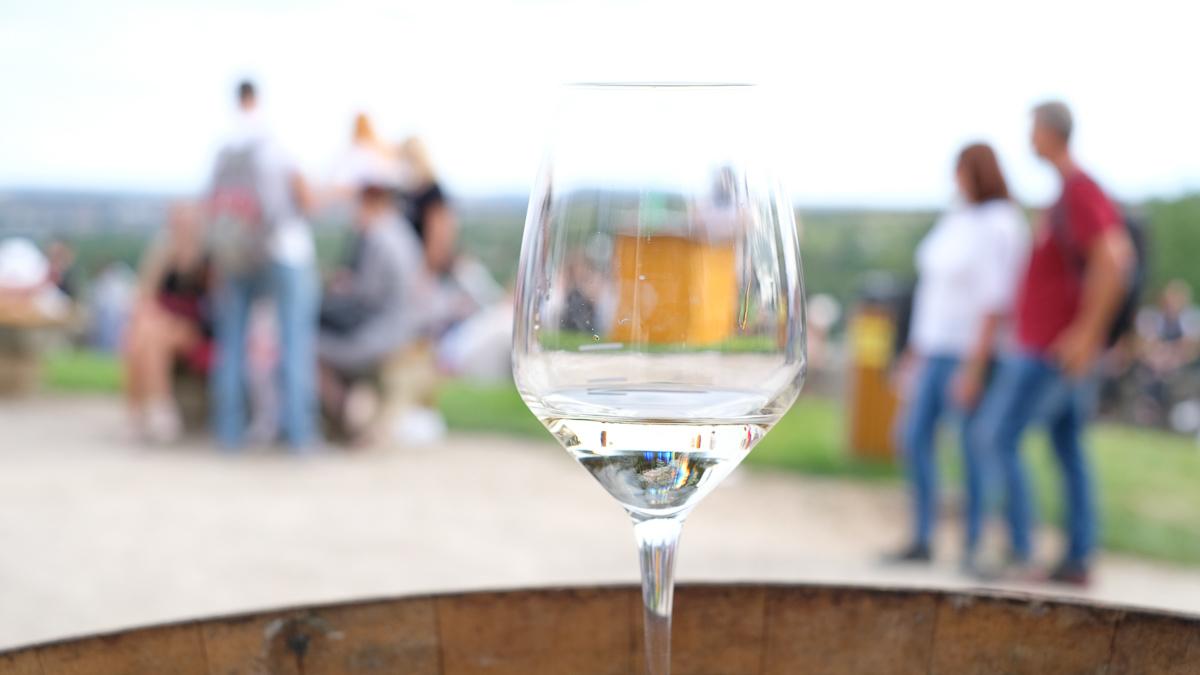 ズノイモのワイン祭りが最高だったのでチェコ旅行者にマジでおすすめしたい