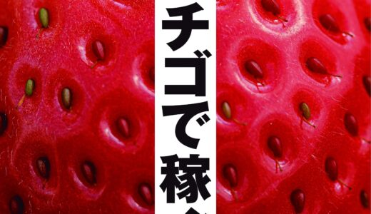 イチゴ農園を始めたい人向けの本「イチゴで稼ぐ!」の一部を執筆しました