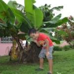 青年海外協力隊としてパナマに派遣されて一ヶ月、ペノノメという第二の故郷ができた。