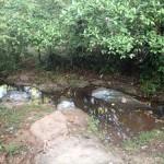 青年海外協力隊のリアルなサバイバル生活!ジャングルの川でフルチンで水浴びしています