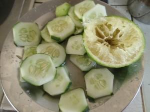 信州の伝統野菜!長野県下伊那郡天龍村の巨大な在来品種ていざなすの由来と阿南町の鈴ケ沢なすとの関係