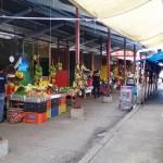 中南米パナマの市場で野菜の流通・販売方法を調査した。