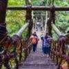 徳島の祖谷(いや)渓谷の蔓橋(かずらばし)を渡る体験、大歩危・小歩危、琵琶の滝